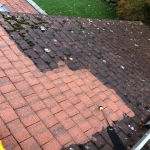 Roof Maintenance in Annis Hill 7