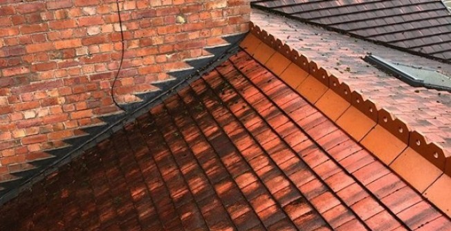 Roof Cleaning Services in Norfolk